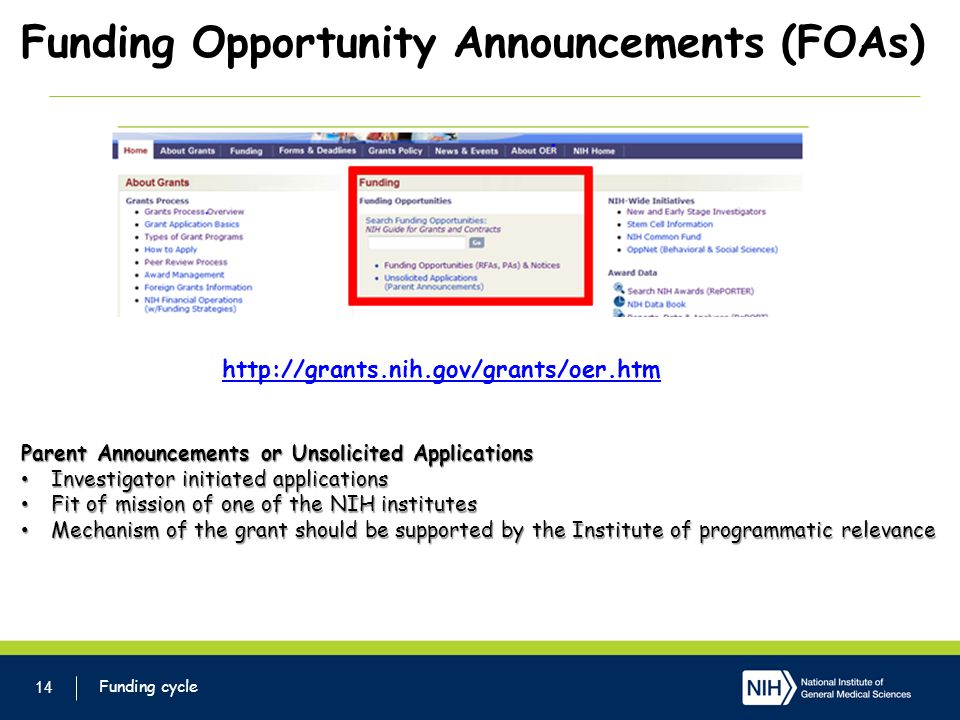 Funding Opportunity Announcements (FOAs)