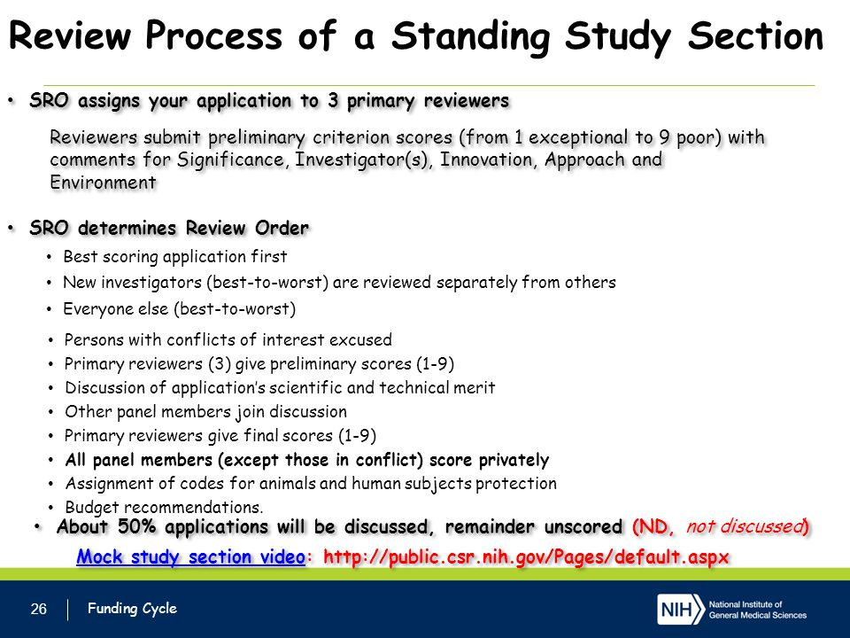 Review Process of a Standing Study Section