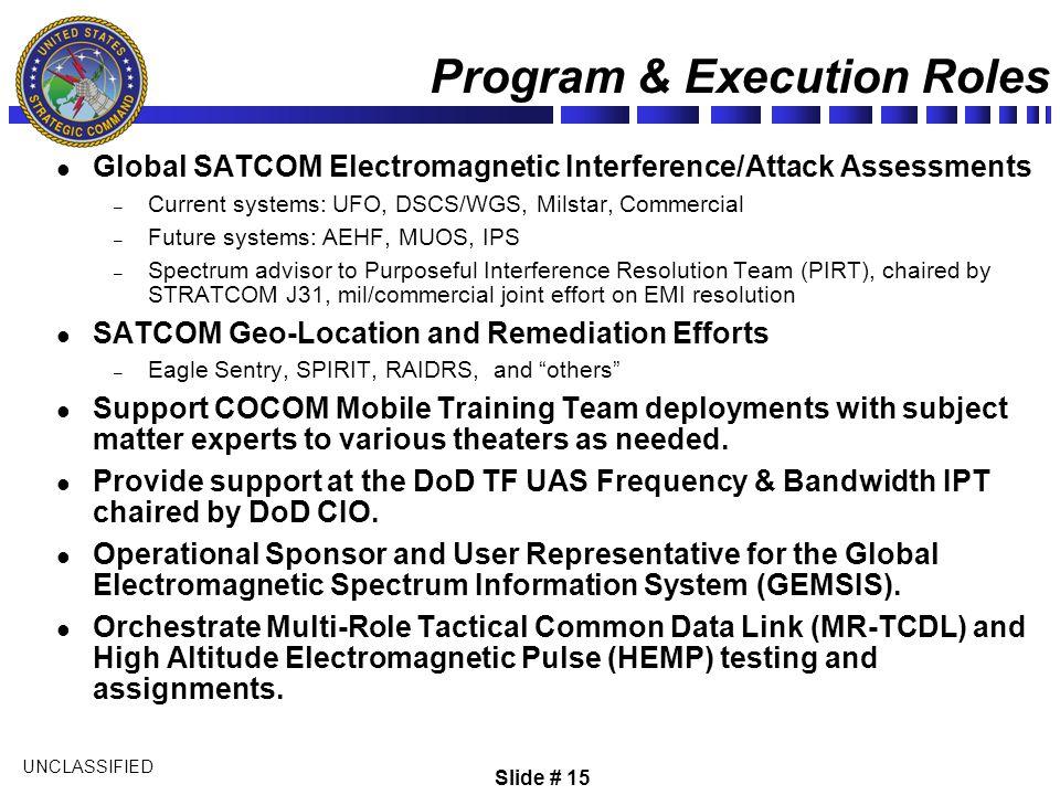 Program & Execution Roles