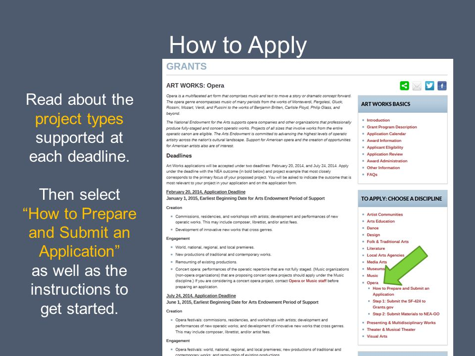 Read about the project types supported at each deadline.
