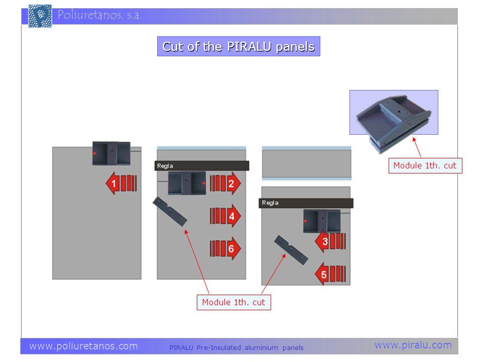 Cut of the PIRALU panels