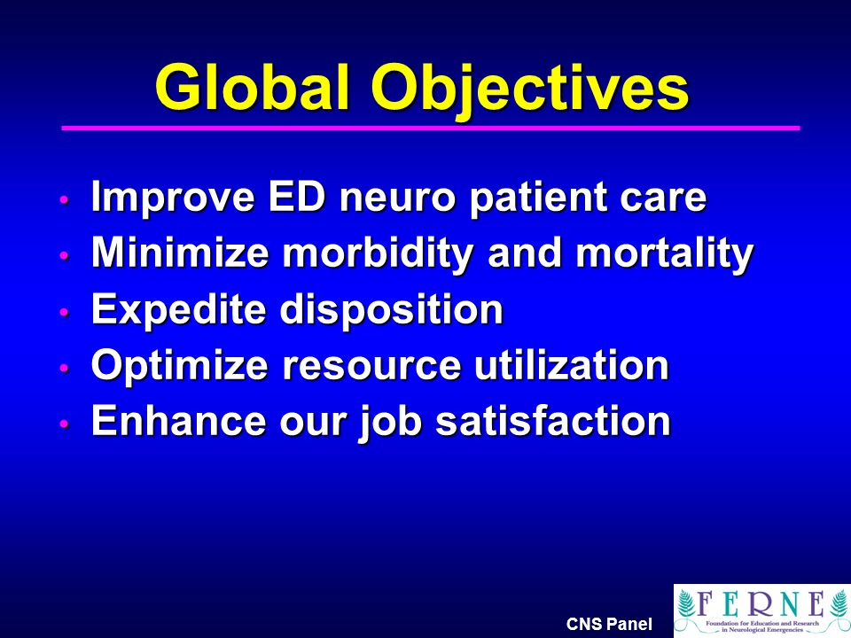 Global Objectives Improve ED neuro patient care