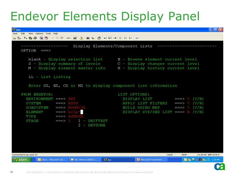 Endevor Elements Display Panel