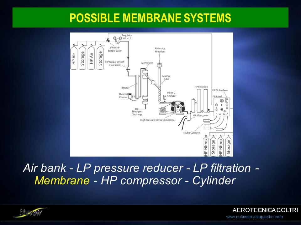 POSSIBLE MEMBRANE SYSTEMS