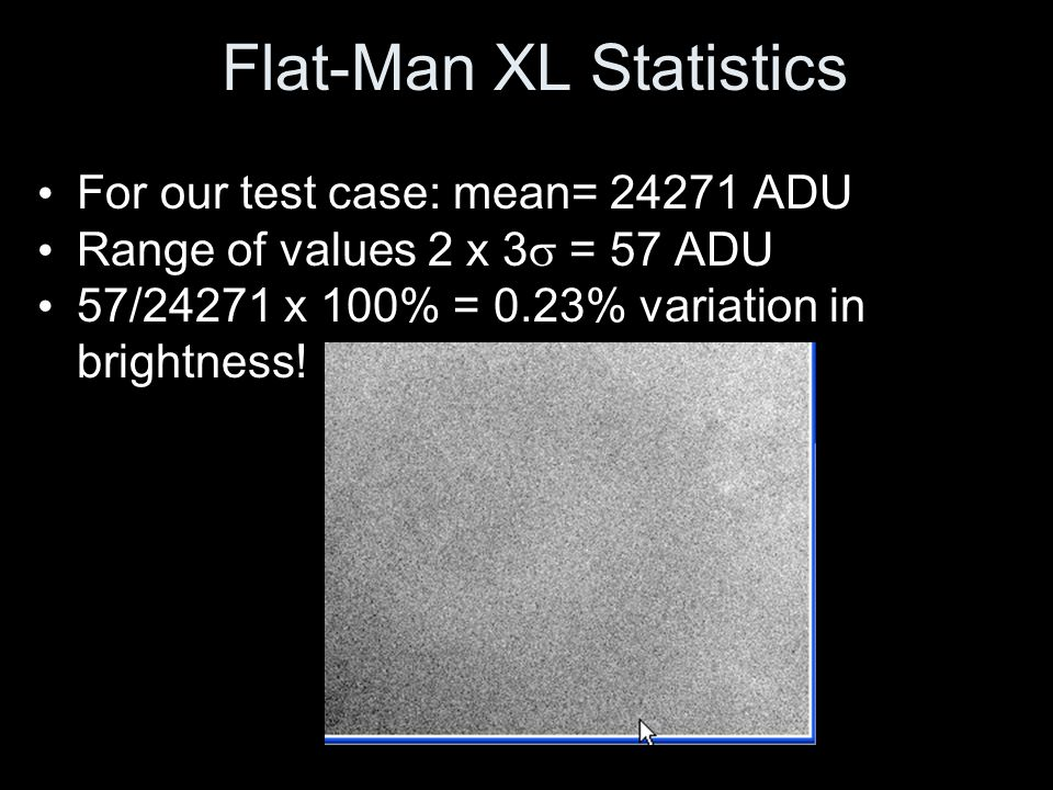 Flat-Man XL Statistics
