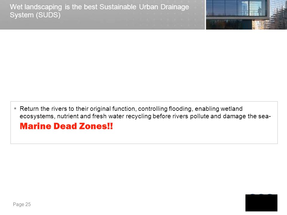 Wet landscaping is the best Sustainable Urban Drainage System (SUDS)