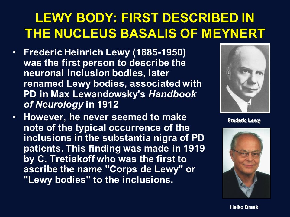 LEWY BODY: FIRST DESCRIBED IN THE NUCLEUS BASALIS OF MEYNERT