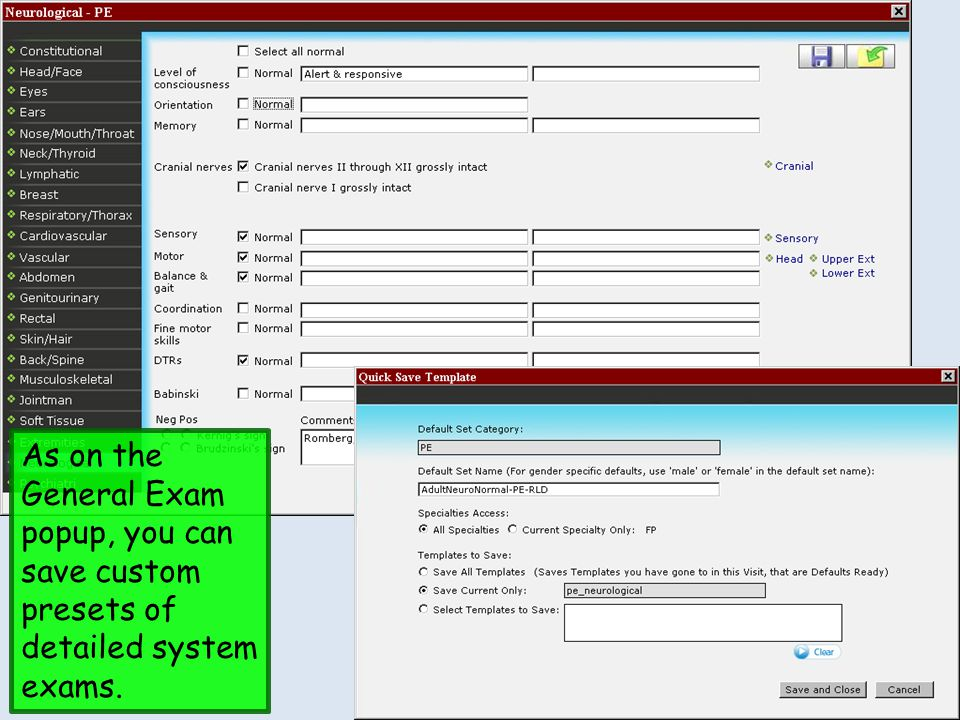 As on the General Exam popup, you can save custom presets of detailed system exams.