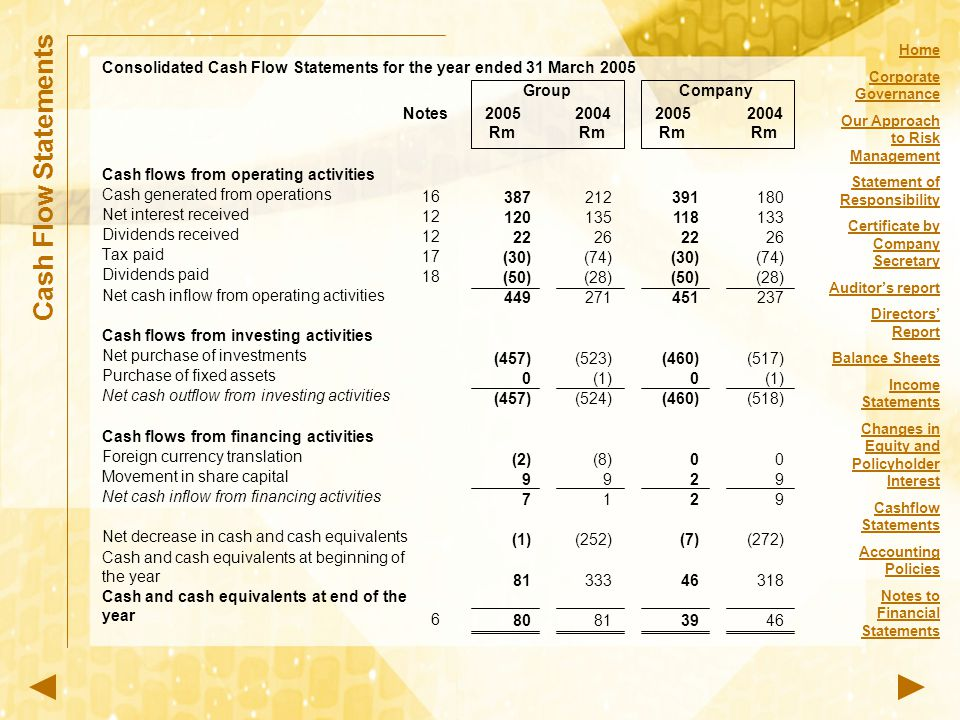 Consolidated Cash Flow Statements for the year ended 31 March 2005