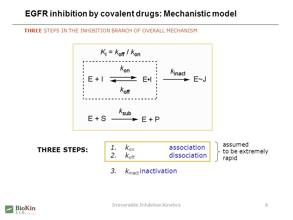 EGFR inhibition by covalent drugs: Mechanistic model