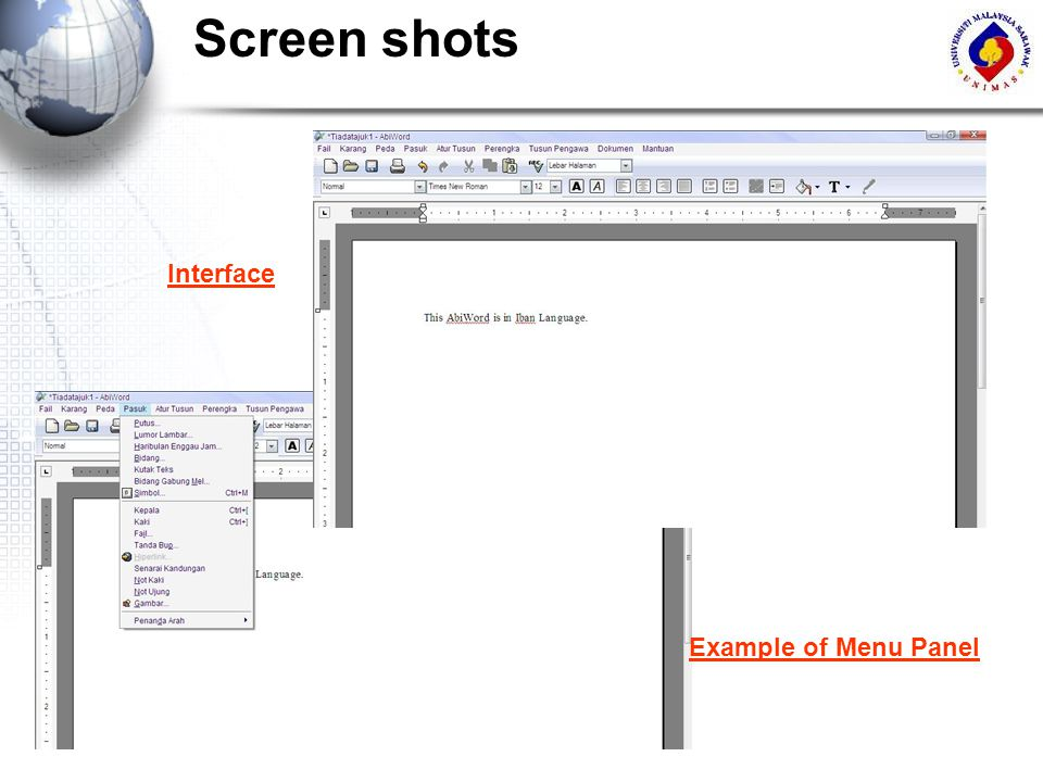 Screen shots Interface Example of Menu Panel