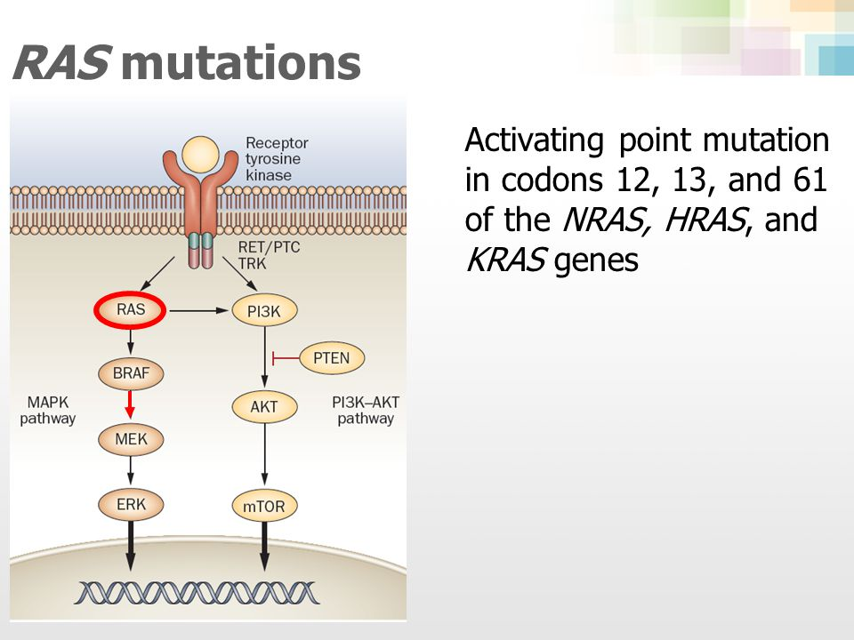 RAS mutations Activating point mutation in codons 12, 13, and 61 of the NRAS, HRAS, and KRAS genes