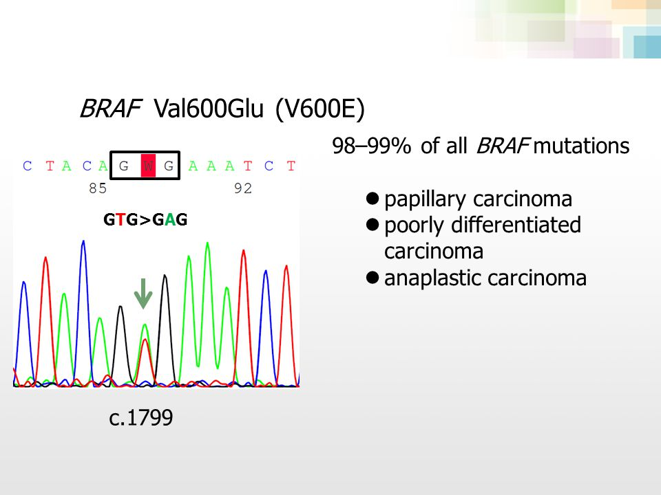 BRAF Val600Glu (V600E) 98–99% of all BRAF mutations