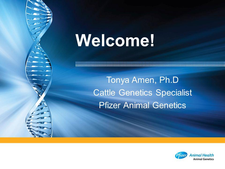 Tonya Amen, Ph.D Cattle Genetics Specialist Pfizer Animal Genetics