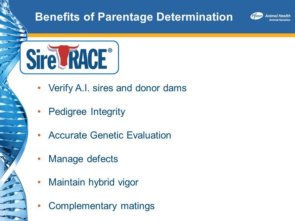 Benefits of Parentage Determination