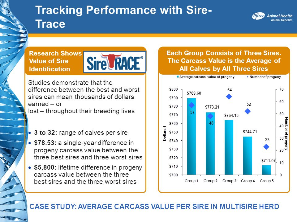 Tracking Performance with Sire-Trace
