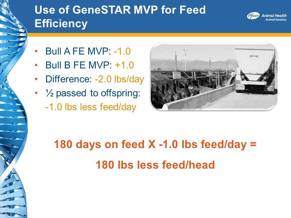 Use of GeneSTAR MVP for Feed Efficiency