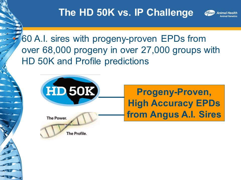 Progeny-Proven, High Accuracy EPDs from Angus A.I. Sires