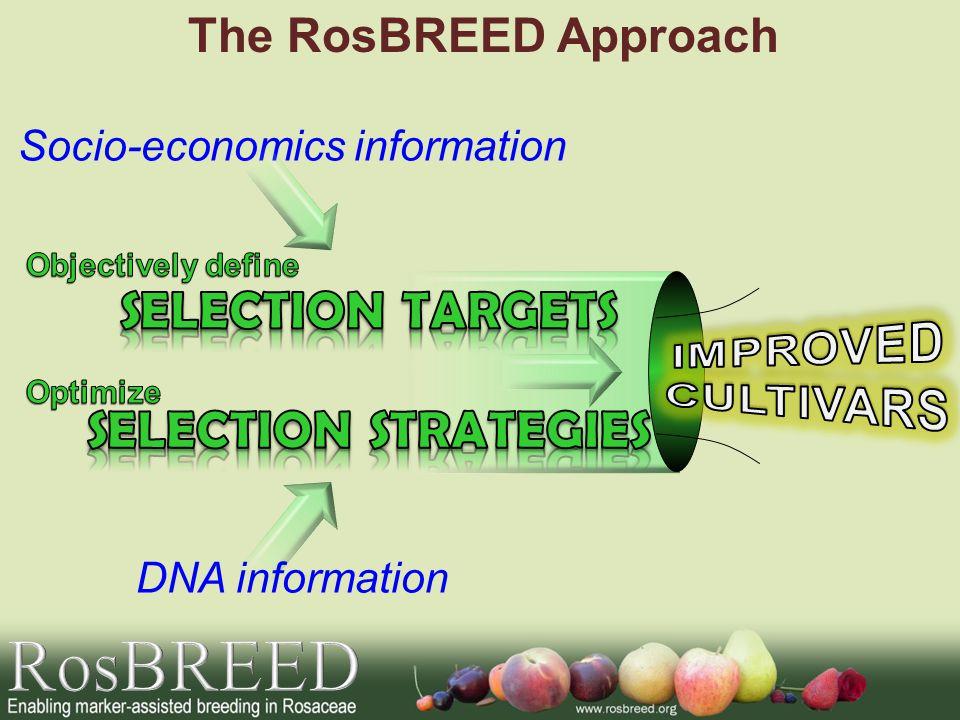 Socio-economics information