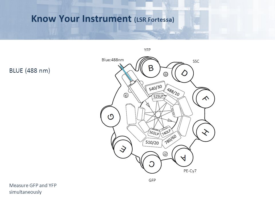 Know Your Instrument (LSR Fortessa)