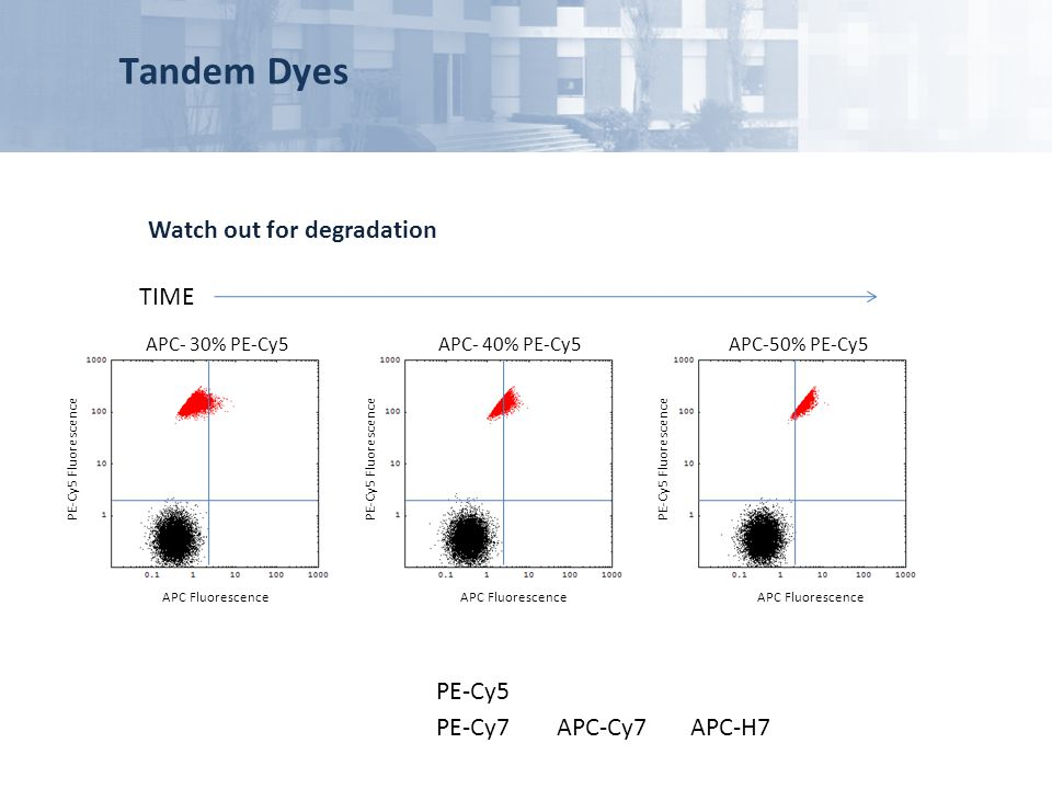 Tandem Dyes Watch out for degradation TIME PE-Cy5 PE-Cy7 APC-Cy7