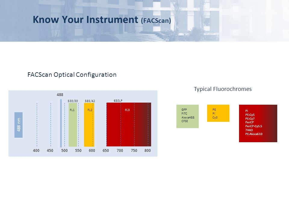 Know Your Instrument (FACScan)