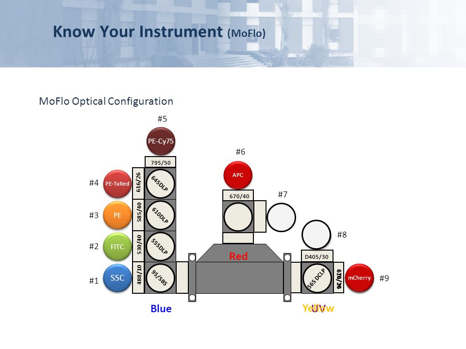 Know Your Instrument (MoFlo)