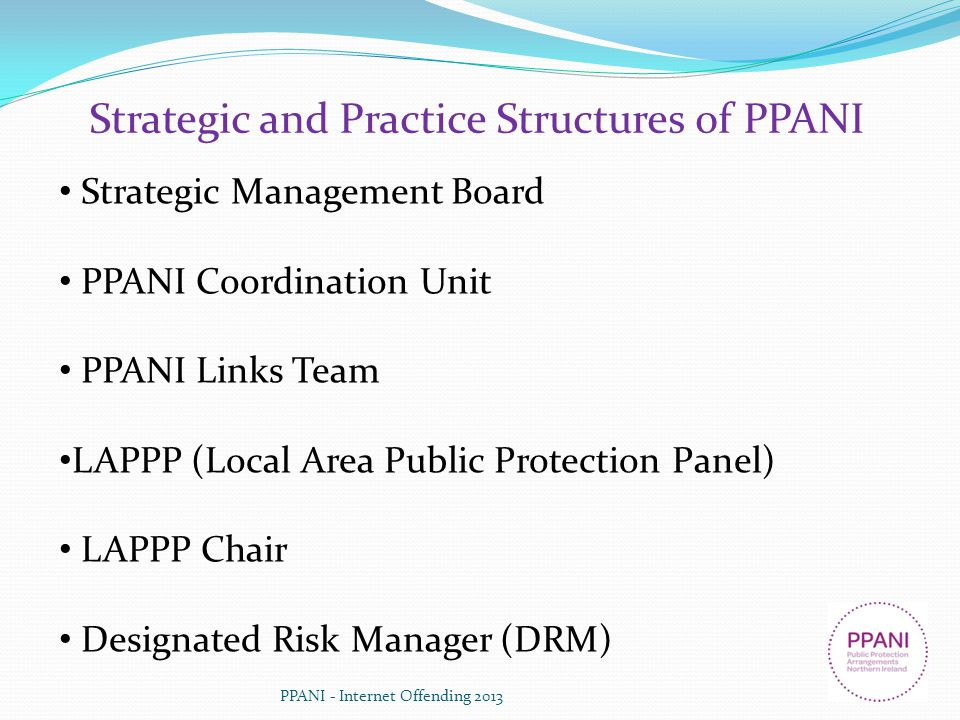 Strategic and Practice Structures of PPANI