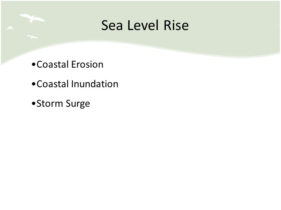 Sea Level Rise Coastal Erosion Coastal Inundation Storm Surge