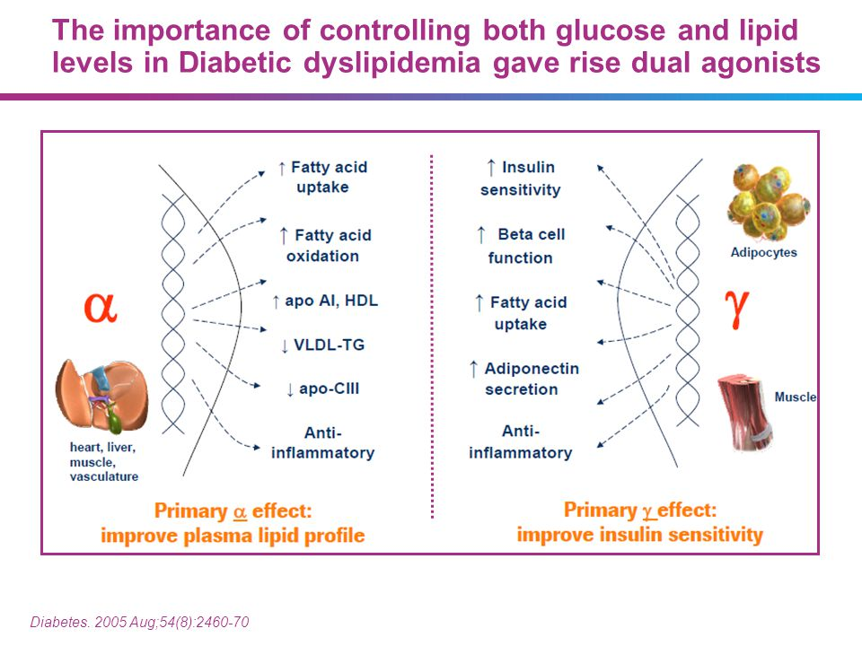 The importance of controlling both glucose and lipid levels in Diabetic dyslipidemia gave rise dual agonists