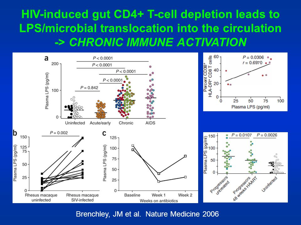 HIV-induced gut CD4+ T-cell depletion leads to LPS/microbial translocation into the circulation -> CHRONIC IMMUNE ACTIVATION