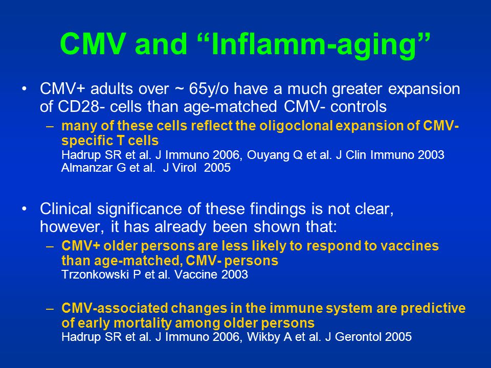 CMV and Inflamm-aging