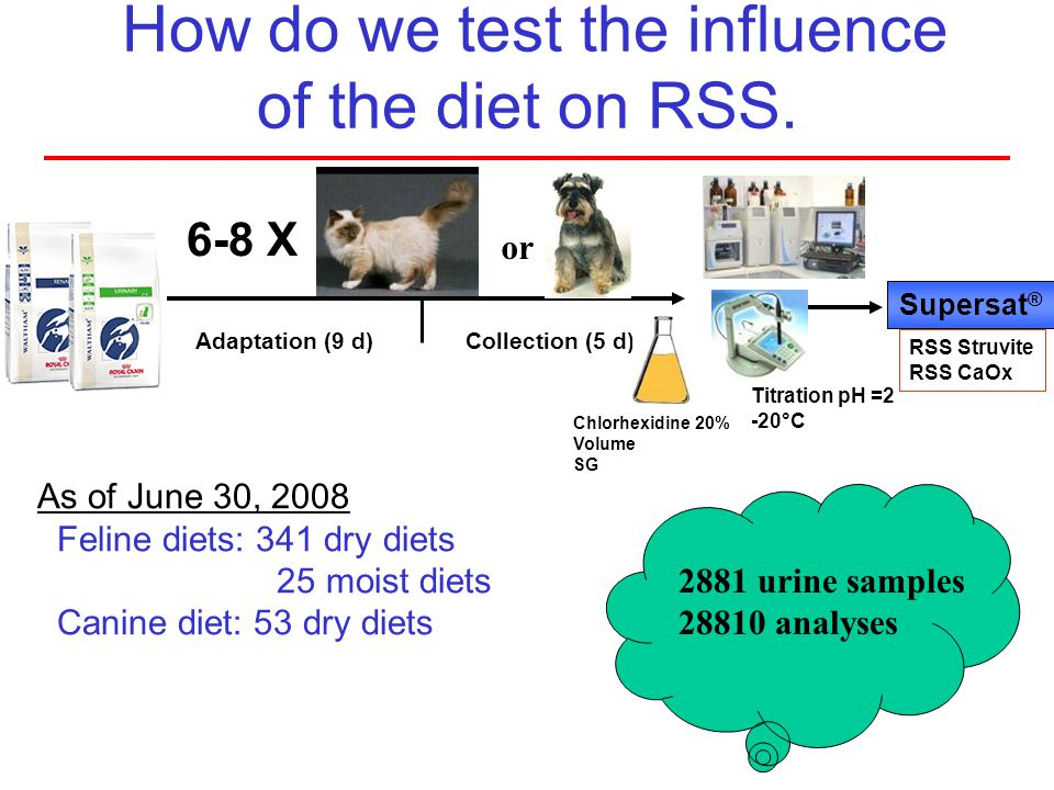 How do we test the influence of the diet on RSS.