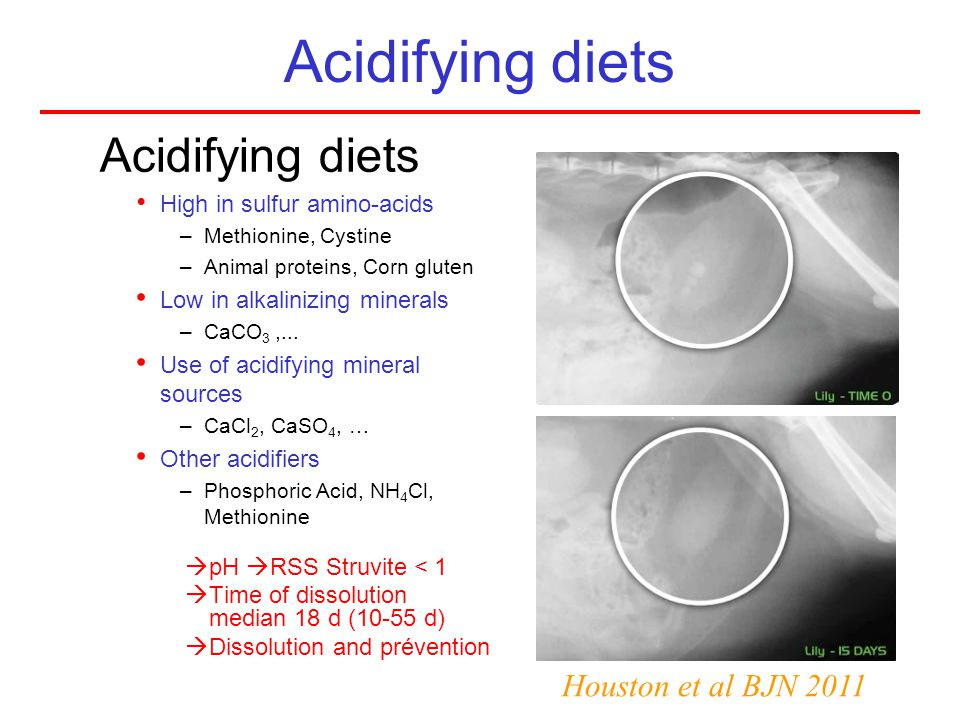 Acidifying diets Acidifying diets Houston et al BJN 2011