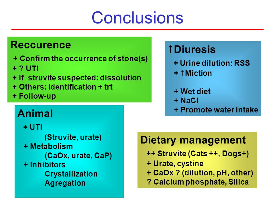 Conclusions Reccurence Diuresis + Confirm the occurrence of stone(s)