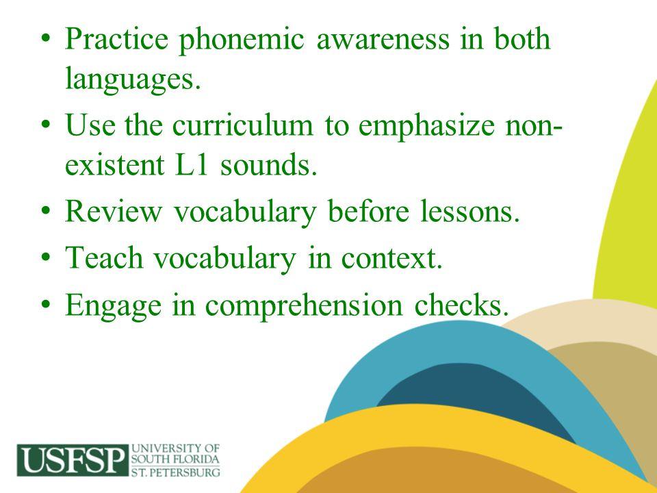 Practice phonemic awareness in both languages.