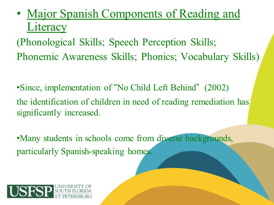 Major Spanish Components of Reading and Literacy