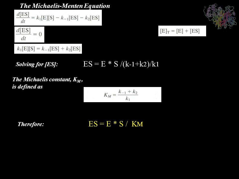 ES = E * S /(k-1+k2)/k1 ES = E * S / KM The Michaelis-Menten Equation