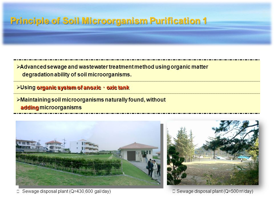 Principle of Soil Microorganism Purification 1