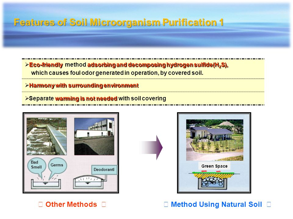 Features of Soil Microorganism Purification 1