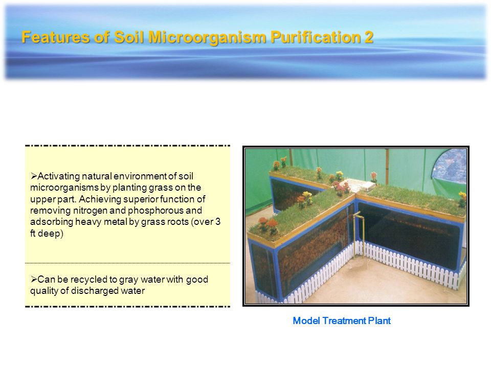 Features of Soil Microorganism Purification 2