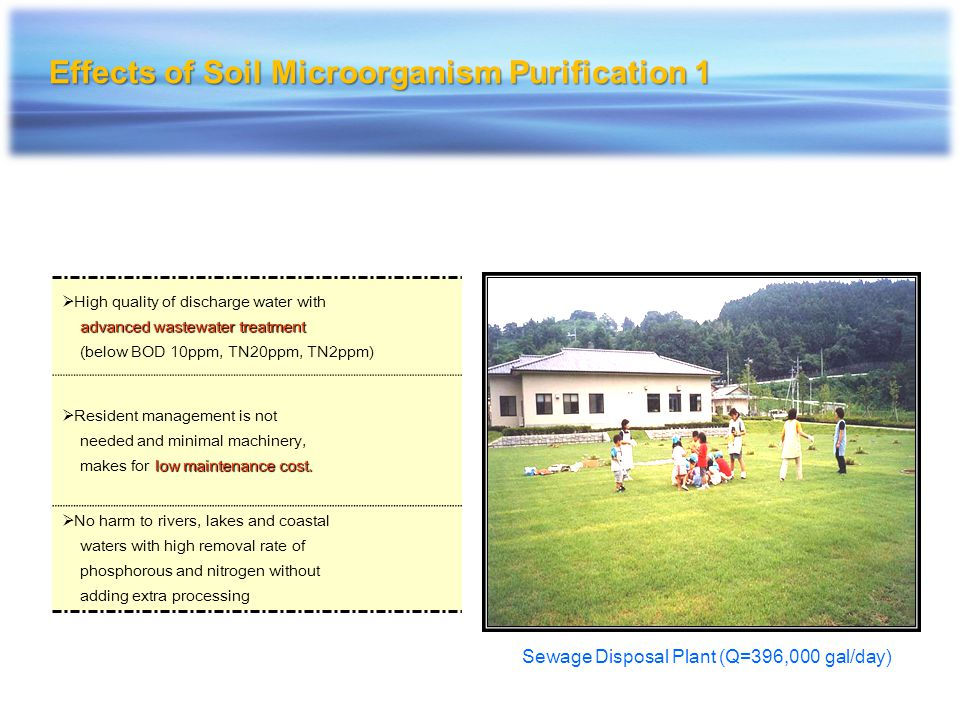 Effects of Soil Microorganism Purification 1