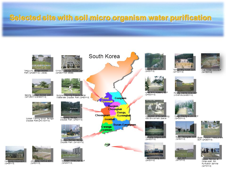 Selected site with soil micro organism water purification
