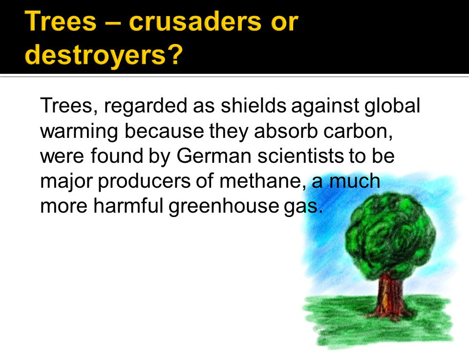 Trees – crusaders or destroyers