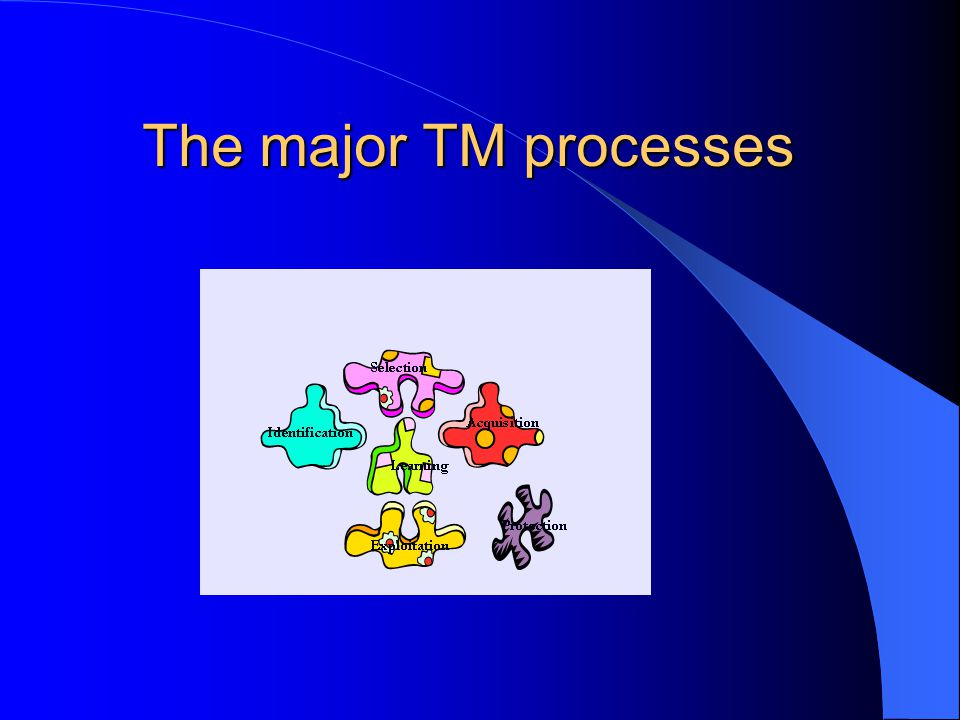 The major TM processes