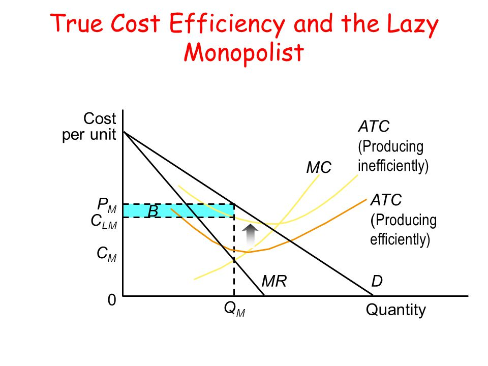 True Cost Efficiency and the Lazy Monopolist