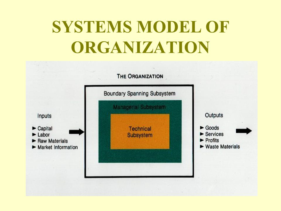 SYSTEMS MODEL OF ORGANIZATION
