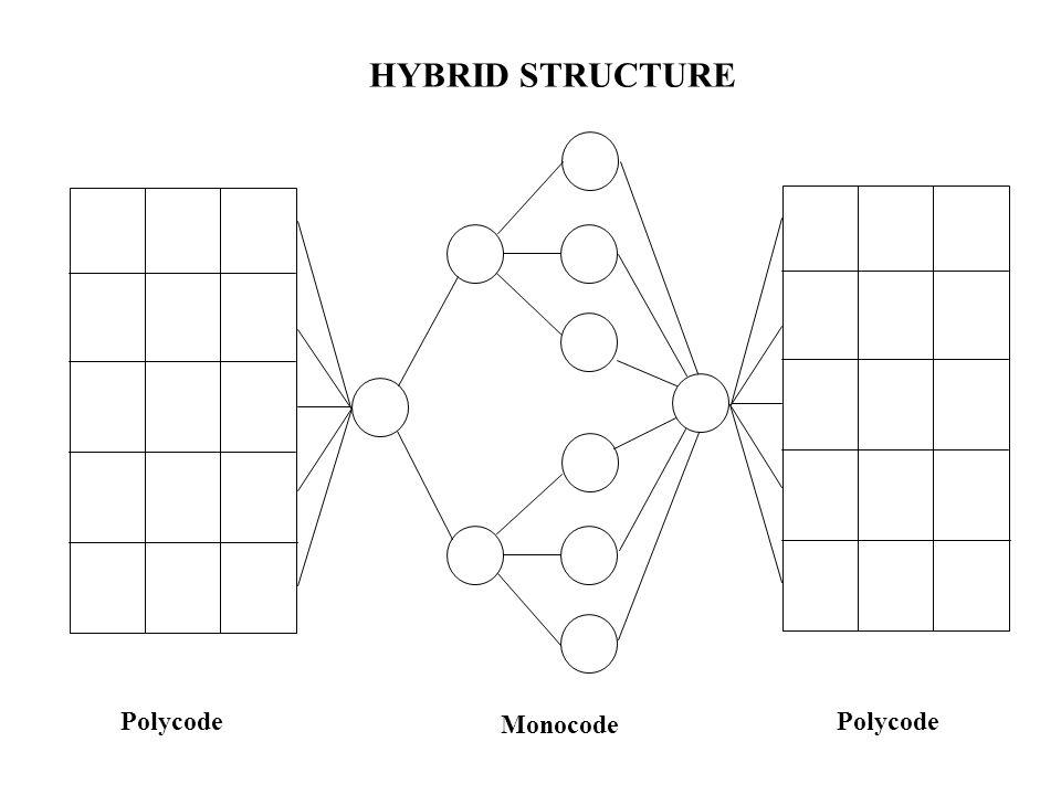 Monocode Polycode HYBRID STRUCTURE