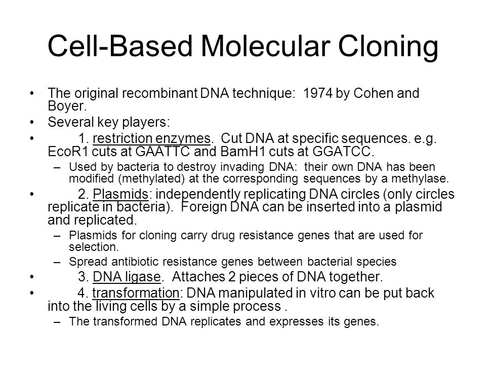 Cell-Based Molecular Cloning