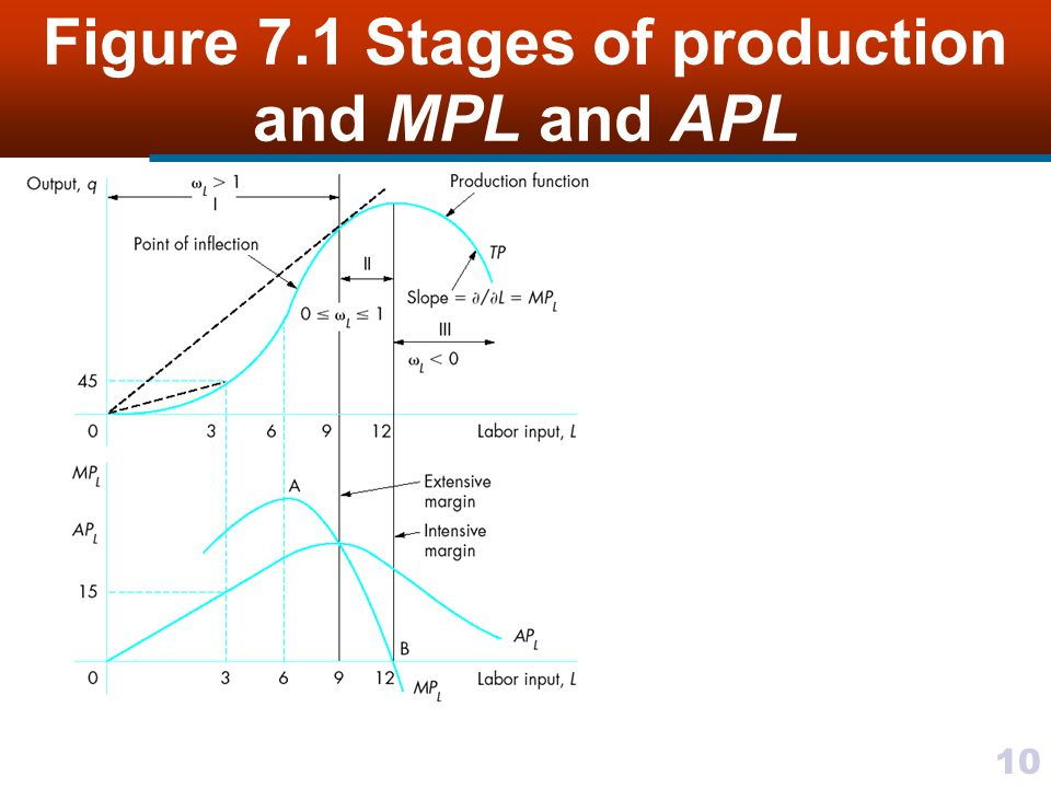 Figure 7.1 Stages of production and MPL and APL